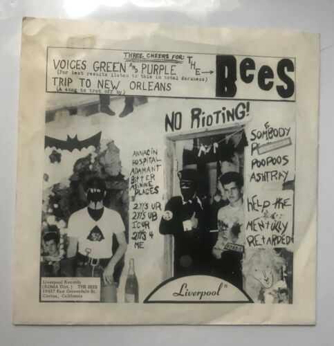 The Bees Voices Green And Purple 45 Liverpool Records 1966