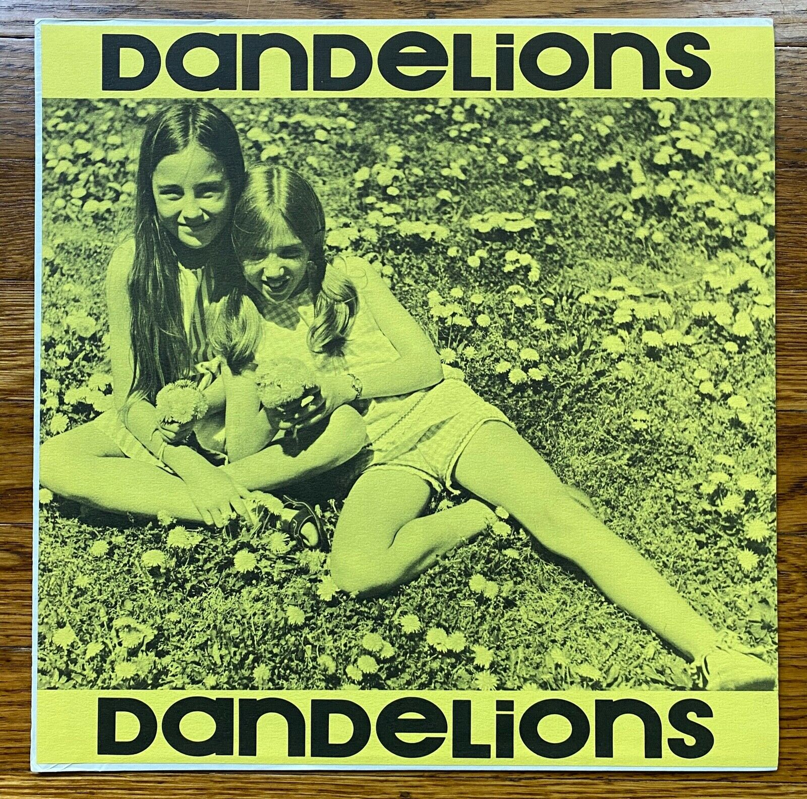 Tres and Kitsy - Dandelions Children of the Sunshine Original LP Folk Psych