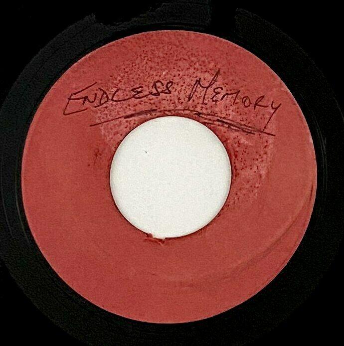 "Roy Panton ""Endless Memory"" Rare Reggae 45 Bronco Blank FBG 7358/7392 mp3"