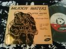 Muddy Waters Mississippi Blues